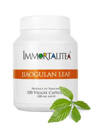 Jiaogulan-1-2-300x420_amazon2